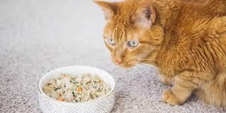 NomNomNow food review